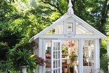 Garden / door Cate Pond
