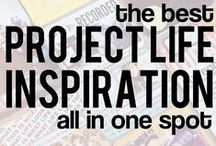 Project Life / by Anne McChristie
