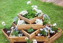 Gardening / Projects to beautify our gardening