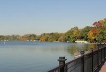 Lake Zurich, IL