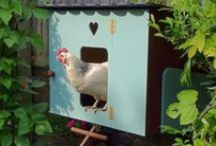 chickens / Lots of cool idea's on caring for chickens!