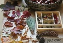 nature tables / I love creating a nature table! This is where I can learn about all the magic of the things I find on my nature walkabouts!