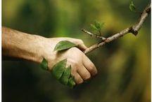 Eco-friendly • Recycle • Green / Riciclare oggetti e materiali per trasformarli con creatività in oggetti originali