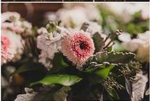 Hope Glen Farm / Minnesota wedding florist, Artemisia Studios, designs wedding floral for a gold and blush wedding at Hope Glen Farm in Cottage Grove, MN. Photos by Jules + Cait Photography