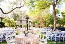 Witte Museum Weddings, San Antonio TX / Weddings and wedding receptions at the Witte Museum in San Antonio, Texas