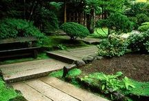 Magical gardens and ideas  /  A garden must combine the poetic and the mysterious with a feeling of serenity and joy. Luis Barragan