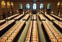 Vineo® - Eclairage LED vins & spiritueux / Les luminaires LED Vineo ont la particularité de ne générer aucun goût de lumière dans les vins et spiritueux. L'éclairage n'est plus une contrainte risquant d'altérer le contenu des flacons, il redevient un facteur de valorisation.