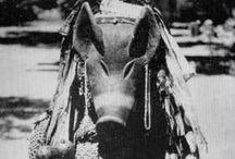 Chokwe | Ngulu Masks