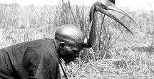 Hausa | Burtu Headdresses