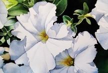 FLOWER PAINTINGS (WHITE) / by Karen Baker