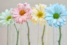 Spring : Crafts Activities Recipes / Spring Crafts   Spring Activities for Kids   Spring Recipes
