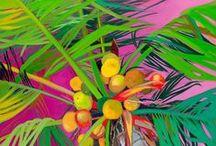 ARTWORK (LEAVES & PLANTS) / by Karen Baker