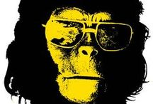 My Planet of Apes