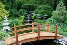 Outdoor~♚Landscape and Garden, New, Ideas, 2014, 2015 / Garden and Landscape Design and Development. Most Pinned  / by Luxury Designs