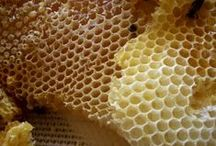 Raw Honey Love