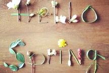 Spring inspiration / Welcome to spring!