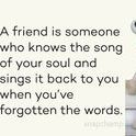 Picture quotes on Friendship / It is a collection of quotes, thoughts and sayings on friendship and  best friend forever #bff
