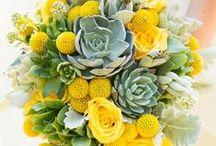 Bouquets / Gorgeous inspiration for your wedding bouquets, centerpieces and decor