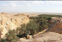 Tunisia / A trip through desert and culture