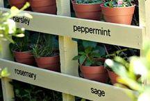 Garden / Land art, ideas, DIY ...