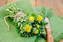 Rhodiola | Botanical Bar / Cultivated in the alpine regions of Tibet, Rhodiola Extract (also known as Golden Root) is known for its positive effects on body and skin. The antioxidant-rich ingredient is as powerful as Vitamin C and helps diminish damage caused by temperature change. #BotanicalBar