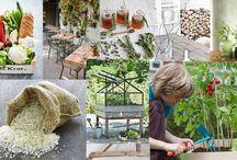 Buiten idee / Kruiden kweken en Leuke  ideeën voor tuin en terras
