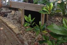 Moestuin op werkhoogte voor kleine tuin / Kweek systeem om kruiden en groenten te kweken op water. Automatisch watergift syteem met of zonder kasje te koop