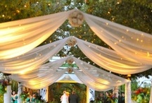 Wedding Planning Ideas / Either it's tips you are looking for or ideas for your wedding, you are searching in the right place.