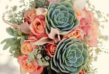 Flowers / Mainly flowers for weddings... Still watch out for great flower ideas for every day.