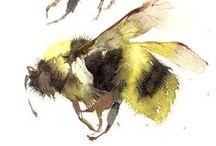 Bee Keeper / Bee keeping, history, interest, self-education.