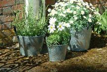 Buiten / Tuin / Leuke plekjes en dingetjes voor in de tuin