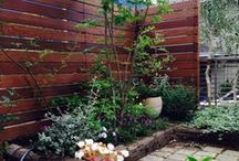 •~•°• Little Garden •°•~•