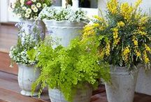 YARD INSPIRATION / Landscaping Inspiration, Patio Ideas, and Gardening Plans.