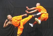 Shaolin Kung Fu / The practice of Shaolin Wushu Kung Fu. / by Toby Vance