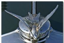 Hood Ornaments / by Carrie Cat