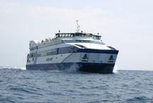 MS VLIELAND / Ms Vlieland (IV, 2005) onderhoudt de dagelijkse veerdienst tussen Harlingen en Vlieland. Aan boord is plaats voor 1200 passagiers en 57 personenauto's. Het schip is 68 meter lang en 17 meter breed en vaart met een snelheid van 14 mijl per uur (ca. 25 km/u).