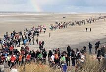 WE ♥ BERENLOOP / De Berenloop op Terschelling is één van de mooiste en zwaarste marathons van heel Nederland. Het parcours voert door de schitterende afwisselende natuur van het waddeneiland. Bossen, duinen, heidevelden, polders en brede stranden vormen het decor van deze bijzondere marathon, die deelnemers trekt uit het hele land en ook daarbuiten. Meedoen? Kijk op www.berenloopterschelling.nl