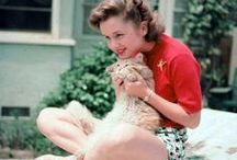 Cat Ladies / Vintage Hollywood Starlets.  With Cats.
