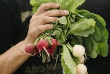 Eat Local NY / Support New York farms and communities and eat locally-grown products