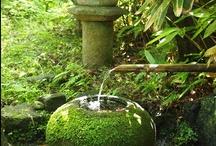 japanese gardening ideas