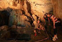 Capricorn Caves / Address: 30 Olsen Caves Rd, Rockhampton QLD 4702 Phone:  +61 7 4934 2883 Email:  admin@capricorncaves.com.au Web:  www.capricorncaves.com.au / by Qld Ecotourism Directory
