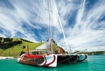Cruise Indigo / Address:  227 Front Street , Hamilton Island, QLD 4803 Phone:  +61 7 4946 9664 Email:  info@cruiseindigo.com.au Web:  www.cruiseindigo.com.au / by Qld Ecotourism Directory