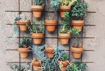 Urban gardening / How to keep as many plants as possible in a small space... Can't wait until we have a balcony!