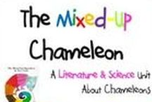 The Mixed-up Chamelion