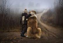 Dogs / by Shani Jones