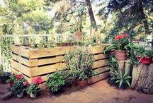 G (vegetable) garden / Progetto per un piccolo orto in terrazza a Mondello (Pa)  7 pallet assemblati per accogliere zucchine melanzane pomodorini e peperoni!