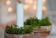 Pure Christmas feelings (ook kersttrend 2014!) / Fijne en pure kerstdecoratie met groen, hout en natuurlijke materialen. Van robuust tot chique.