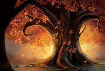 Autumn / Falling for fall
