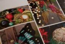 Flora & Fauna Christmas (kersttrend 2014!) / landelijke en ambachtelijke materialen, hout en steen, gewien, vlinders, pauwenveren, donker groen, bordeau en leigrijs. Of juist met moderne twist door glitters, fuchsia en turqoise accenten.