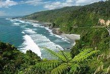 Punakaiki and The Great Coast Road, West Coast, South Island New Zealand / Base yourself at Wai-iti on Punakaiki or Wai-iti Retreat and explore these options. / by Wai-iti on Punakaiki